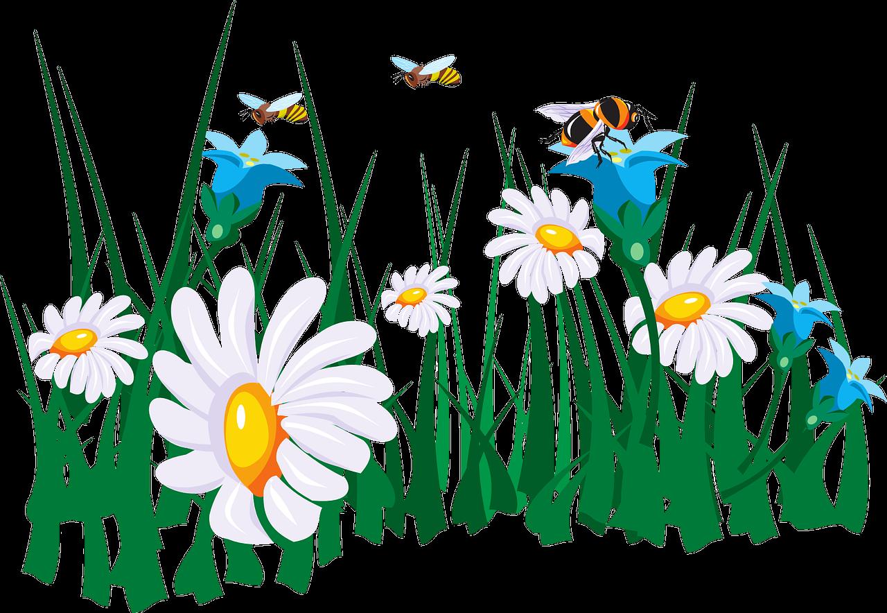 Jarné básničky o včielkach