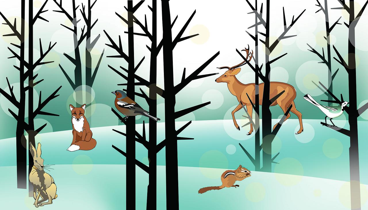 Lesné zvieratká ukryté v básničkách