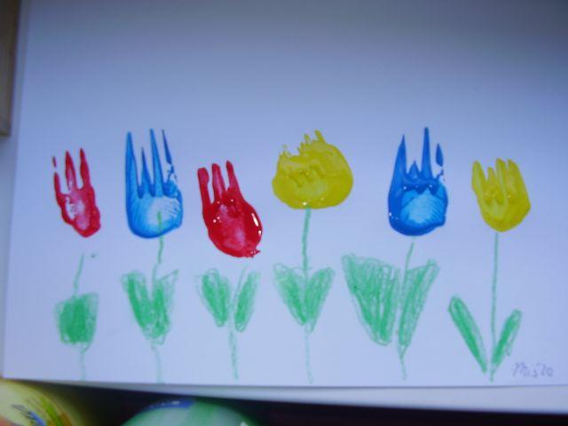 Vidličkové tulipány