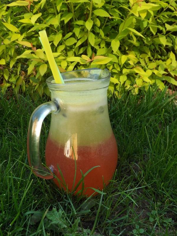 Rebarborovo-jablková limonáda