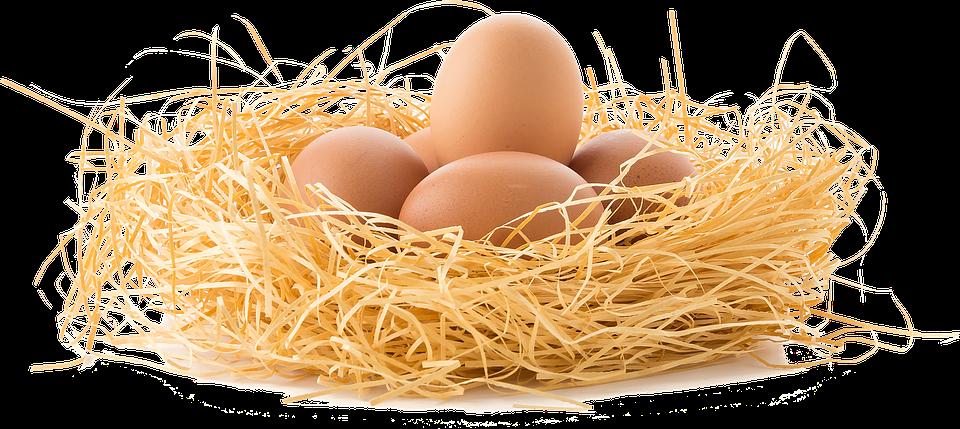 Päť vajec