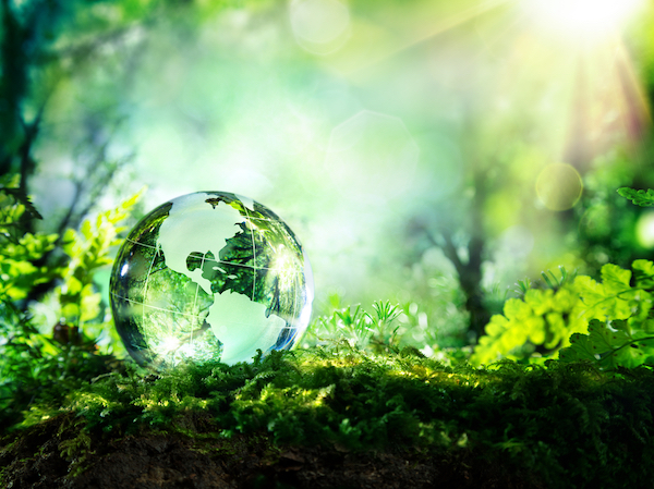 Ako dochádzať do práce ekologicky?